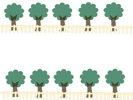 Street tree 10 trees