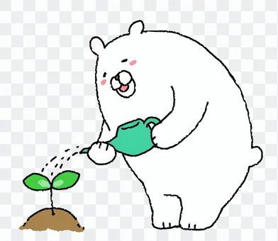 白熊吹口哨水