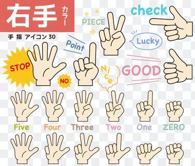 手指圖標30
