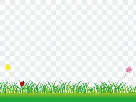 春天_草原蝴蝶和瓢蟲