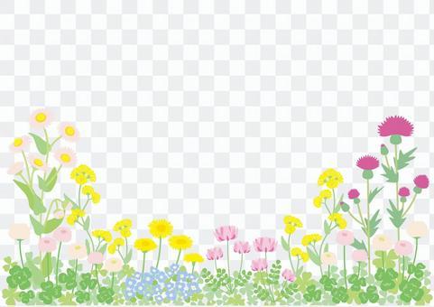 野花框架02在春天02