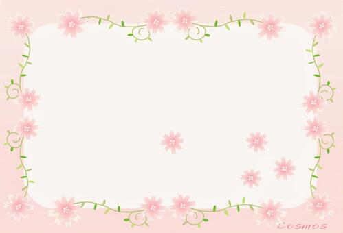 Cosmos pink frame