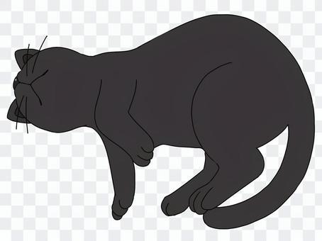 睡覺的黑貓