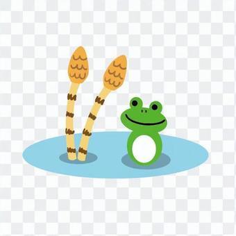 馬尾和青蛙