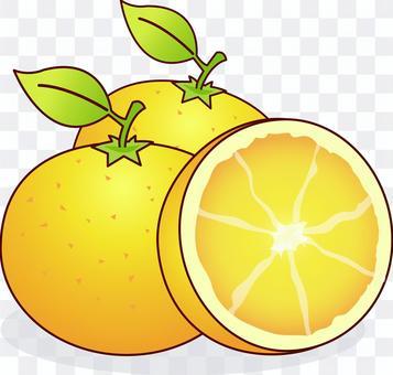 Orange navel orange peel citrus