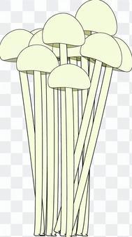 Shimeji蘑菇