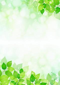 新鮮的綠色273