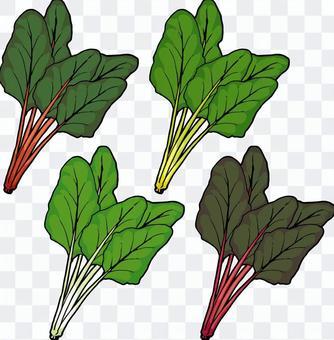 正常草/瑞士甜菜/唐萵苣