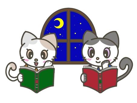 一隻喜歡在長秋夜裡讀書的貓