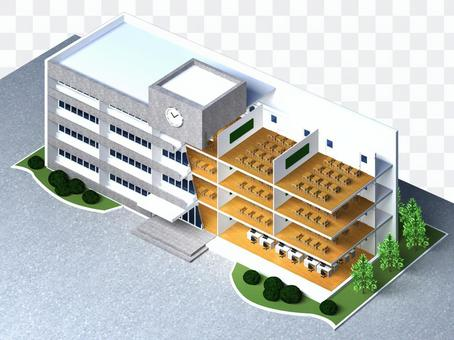 School (school building) sectional view 2