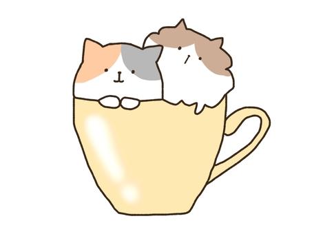 杯子裡的貓