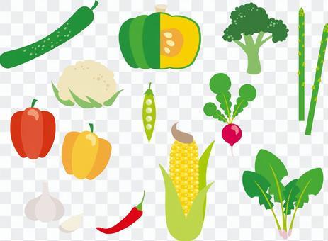各種蔬菜_02