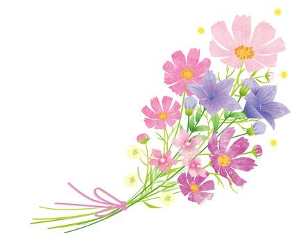 秋花花束2