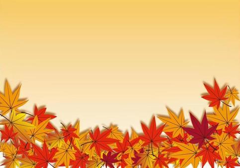 낙엽 백 02
