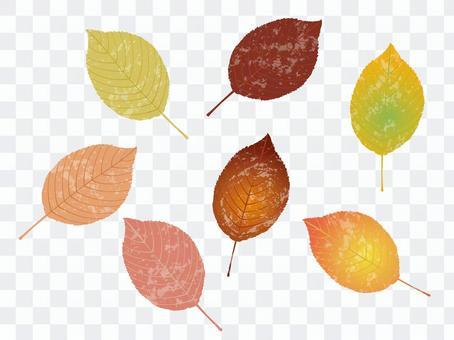 가을 잎 3
