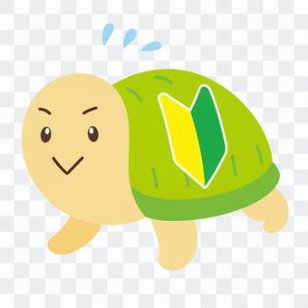 有初學者標記的烏龜