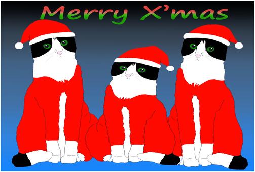 Three cats santa