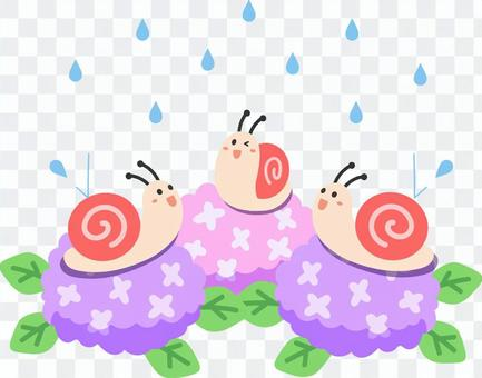 蝸牛、繡球花和雨
