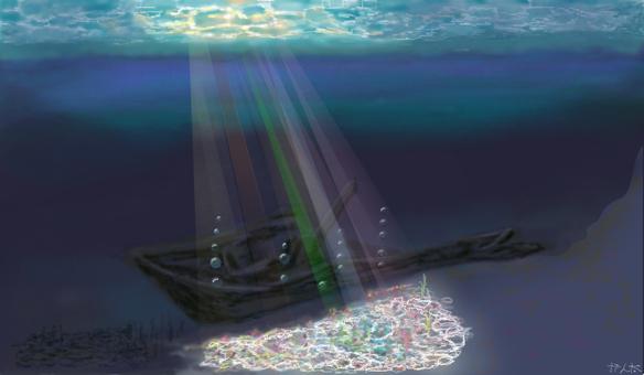彩虹閃耀著大海