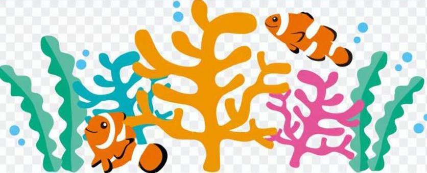 Clown ferns & amp; Coral