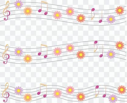 Cosmos fall fall cherry fall