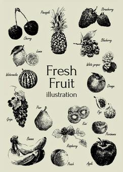 Fresh fruit illustration