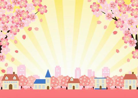 櫻花盛開,城市景觀和集中的線背景水平
