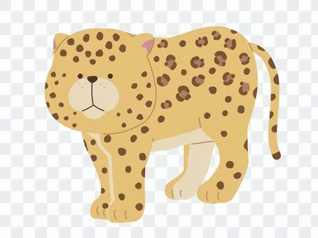 Leopard illustration