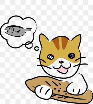 一隻貓在貓上