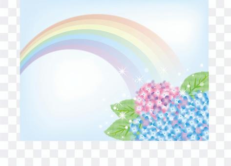 繡球彩虹3