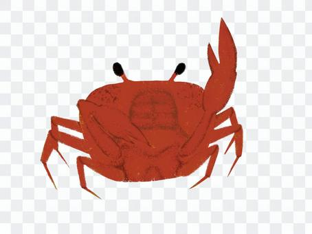 一隻現實的螃蟹