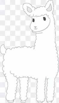 羊駝 - 著色