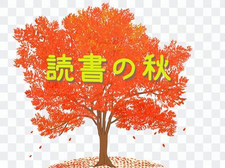 読書の秋(街路樹)