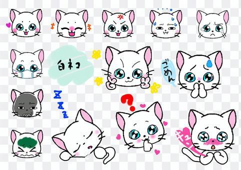 面部表情姿勢我們的小貓白貓設置表情符號