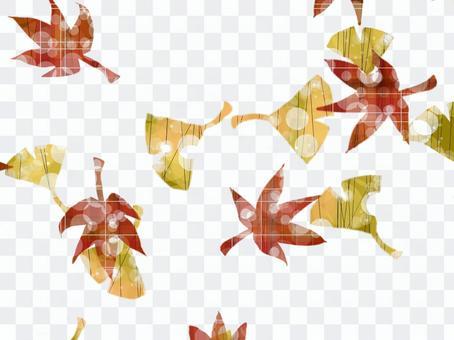 銀杏和秋葉