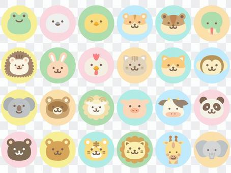 Animal face icon_round color