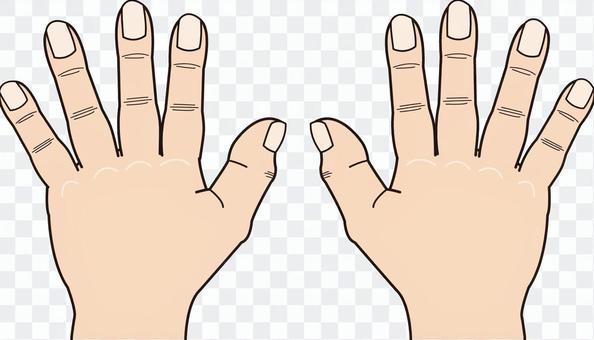 手シリーズ デフォルメ 両手 手の甲