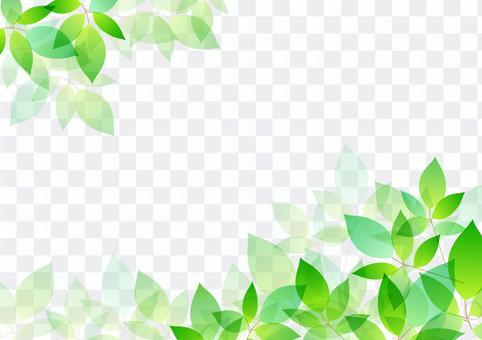 新鮮的綠色材料21