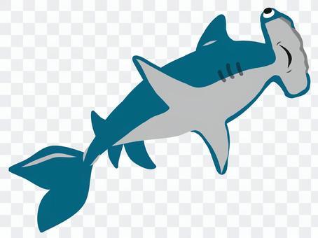 海洋伴侶雙髻鯊