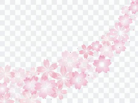Cherry blossom image 015