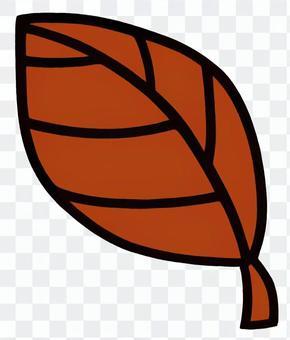 葉2淺褐色