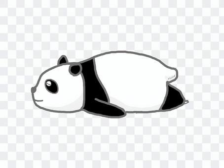 Pandanel 03
