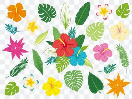 Tropical plant decoration set