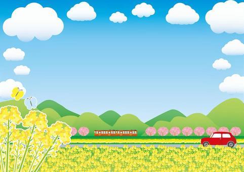 春季農村油菜田和沿鐵路軌道的櫻花框架