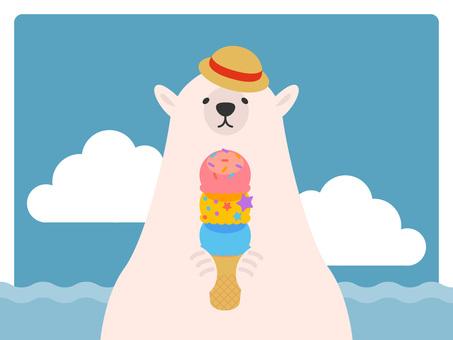 Polar bear iced