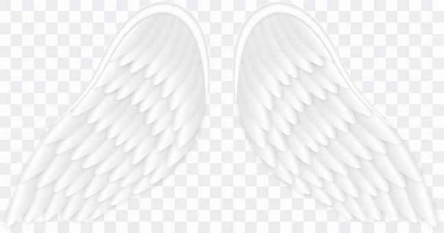 天使的翅膀/ AngelWing