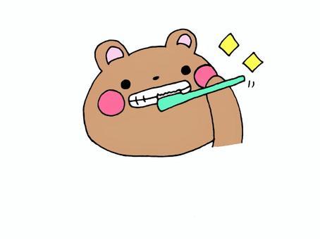 牙膏熊1 2