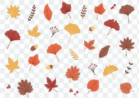 秋天的背景與秋葉和堅果