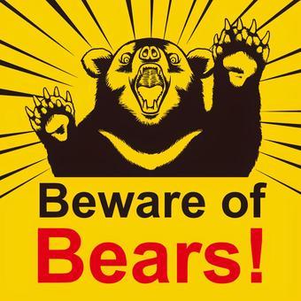 Bear Attention 7