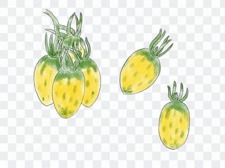 意大利番茄恐龍蛋